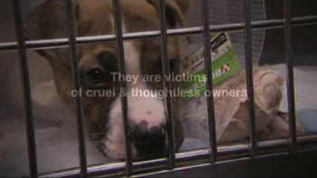 ASPCA TV Spot, 'Love' Featuring Kim Rhodes - Thumbnail 4
