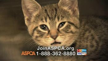 ASPCA TV Spot, 'Love' Featuring Kim Rhodes - Thumbnail 5