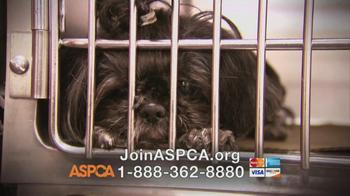 ASPCA TV Spot, 'Love' Featuring Kim Rhodes - Thumbnail 7