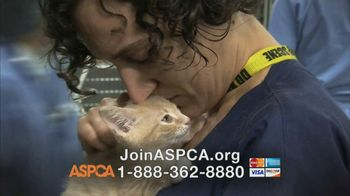 ASPCA TV Spot, 'Love' Featuring Kim Rhodes