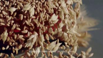 Honey Maid Teddy Grahams TV Spot, 'Dibujo' [Spanish] - Thumbnail 6