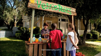 Hidden Valley Sandwich Spread and Dip TV Spot, 'Food Stands' - Thumbnail 1