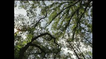 Discover the Forest TV Spot, 'La Familia' [Spanish] - Thumbnail 4