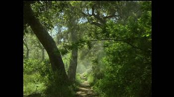 Discover the Forest TV Spot, 'La Familia' [Spanish] - Thumbnail 5