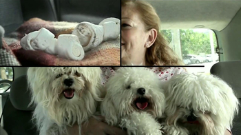 Febreze Car TV Spot, 'Experimento: Perros' [Spanish] - Thumbnail 2
