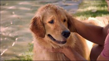 PetSmart Fourth of July Sale TV Spot - Thumbnail 4