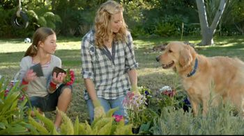 Sentry Fiproguard Max TV Spot, 'Your Pet' - 321 commercial airings