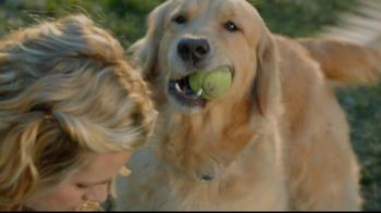 Sentry Fiproguard Max TV Spot, 'Your Pet' - Thumbnail 1