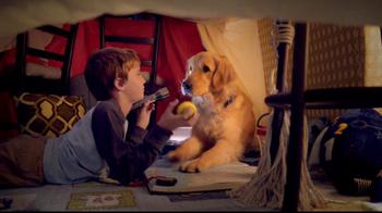 Sentry Fiproguard Max TV Spot, 'Your Pet' - Thumbnail 6