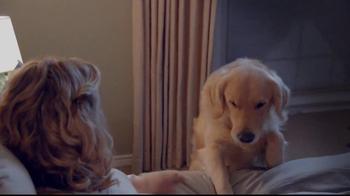 Sentry Fiproguard Max TV Spot, 'Your Pet' - Thumbnail 8