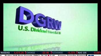 WisdomTree DGRW TV Spot - Thumbnail 4
