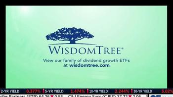WisdomTree DGRW TV Spot - Thumbnail 6
