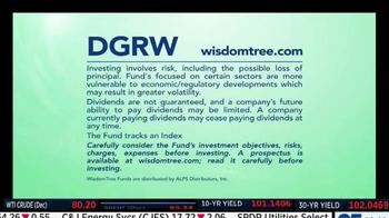 WisdomTree DGRW TV Spot - Thumbnail 7