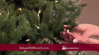 Balsam Hill Branch Kit TV Spot, 'Top Design Products' - Thumbnail 5