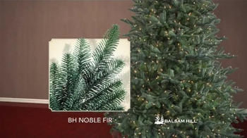 Balsam Hill Branch Kit TV Spot, 'Top Design Products' - Thumbnail 6
