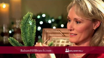 Balsam Hill Branch Kit TV Spot, 'Top Design Products' - Thumbnail 7