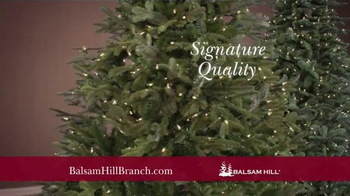 Balsam Hill Branch Kit TV Spot, 'Top Design Products' - Thumbnail 8