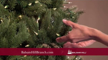 Balsam Hill Branch Kit TV Spot, 'Top Design Products' - Thumbnail 9