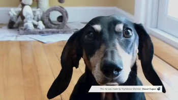Trip Advisor TV Spot, 'Pet Friendly by TripAdvisor Member Oscar Lopez' - Thumbnail 5
