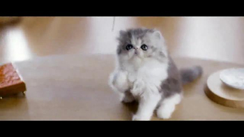 Diet Coke TV Spot, 'Taylor Swift Kittens' Featuring Taylor Swift - Thumbnail 1