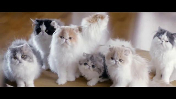 Diet Coke TV Spot, 'Taylor Swift Kittens' Featuring Taylor Swift - Thumbnail 5