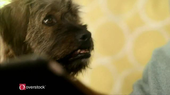 Overstock.com TV Spot, 'Home for the Holidays: In Laws' - Thumbnail 6