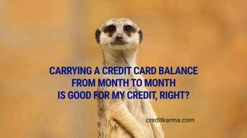 Credit Karma TV Spot, \'Meerkat\'