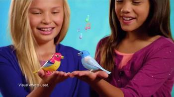 DigiBirds TV Spot, 'Tweet and Sound' - Thumbnail 6