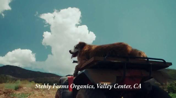Whole Foods Market TV Spot, 'Values Matter: Produce' - Thumbnail 7