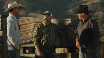 Whole Foods Market Beef TV Spot, 'Values Matter: Beef' - 268 commercial airings