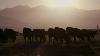 Whole Foods Market Beef TV Spot, 'Values Matter: Beef' - Thumbnail 3