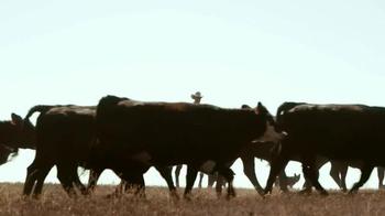 Whole Foods Market Beef TV Spot, 'Values Matter: Beef' - Thumbnail 7