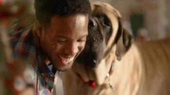 PetSmart Holiday TV Spot, 'Toys and Treats' - Thumbnail 6