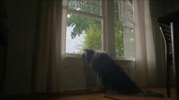 Verizon TV Spot, 'Dog' - Thumbnail 1