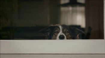 Verizon TV Spot, 'Dog'