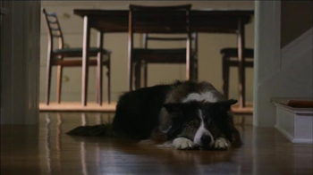 Verizon TV Spot, 'Dog' - Thumbnail 3