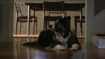 Verizon TV Spot, 'Dog' - Thumbnail 4