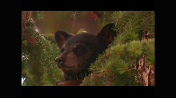 Arbor Day Foundation TV Spot, 'Drinking Water' - Thumbnail 7