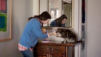 Meow Mix Irresistibles TV Spot, 'Cat Dance'