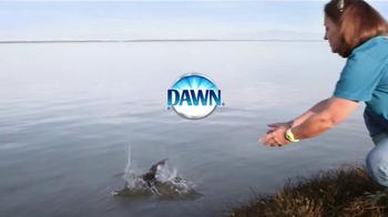 Dawn Ultra TV Spot, 'La vida silvestre' [Spanish] - Thumbnail 10