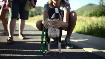 P5 The Great Dog App thumbnail