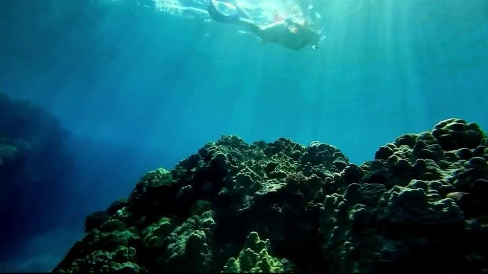 The Hawaiian Islands TV Commercial, 'Hawaii'