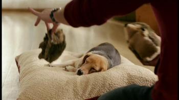 PetSmart Stock Up and Save TV Spot, 'Sentry'  - Thumbnail 2