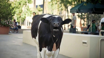 Chick-fil-A Spicy Chicken Sandwich TV Spot, 'Mooing' - Thumbnail 2