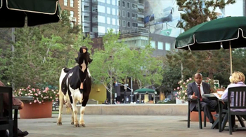 Chick-fil-A Spicy Chicken Sandwich TV Spot, 'Mooing' - Thumbnail 4