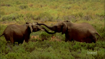 Travel Channel TV Spot, Win a Trip to Cape Town, South Africa' - Thumbnail 5