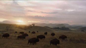Esurance TV Spot, 'Roaming Buffalo' - 194 commercial airings