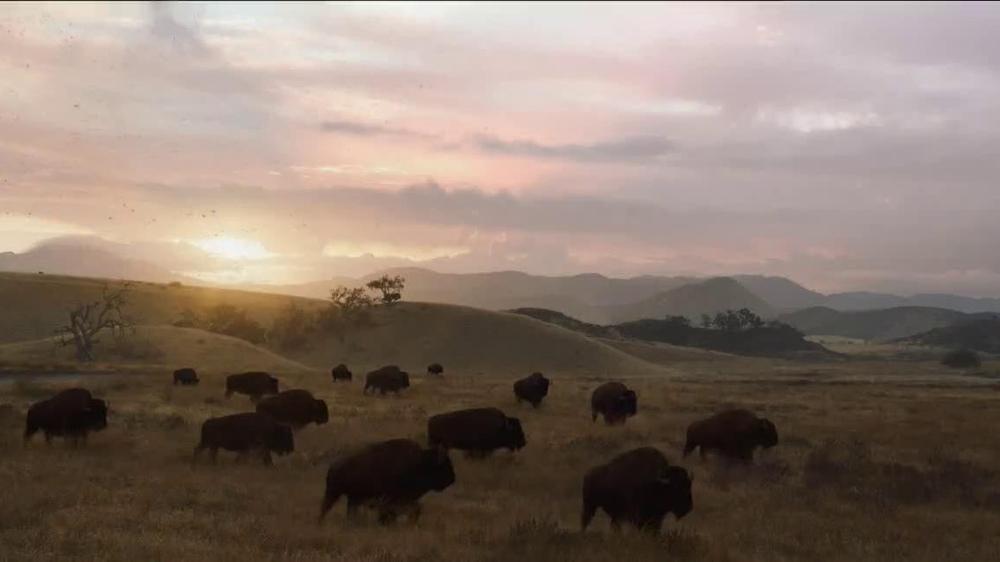 Esurance TV Commercial, 'Roaming Buffalo'