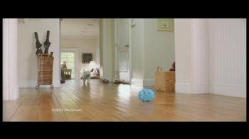 PetSmart Puppy Starter Kit TV Spot, 'Puppies' - Thumbnail 1
