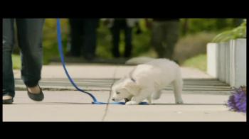 PetSmart Puppy Starter Kit TV Spot, 'Puppies' - Thumbnail 2